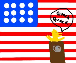 Duck runs for president
