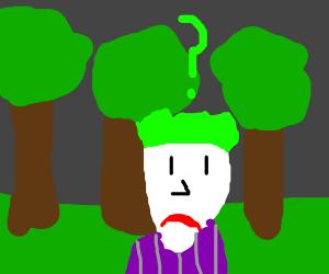 Joker lost in a forest
