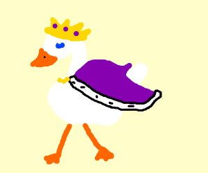 the king of ducks