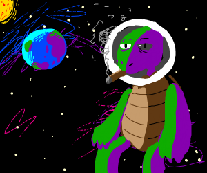 Turtle smokes a cigar in space