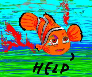Nemo is bleeding