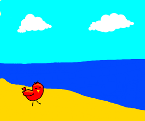 a red bird on the shore