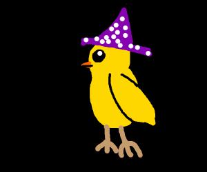 Duck wearing a wizard's hat