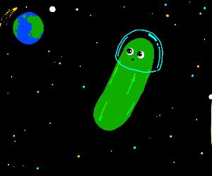 Space Cucumber