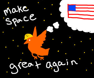trump bird in space