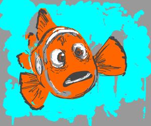 Nemo dad when he lost nemo