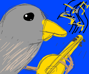 talented pidgeon playing an acoustic guitar