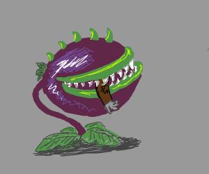Plants vs. Zombies Chomper enjoys a snacc