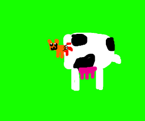 Half cow half cat