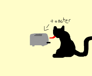 cat licking a toaster
