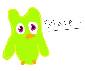 duolingo owl stares into my soul