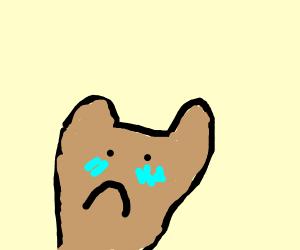 sad toasted bread