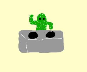 Cactus dj
