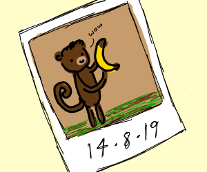 Picture of monkey holding banana