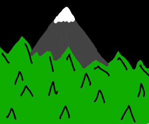 a mountain top in the middle of a pine forest