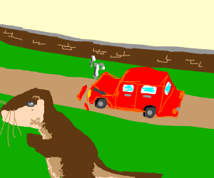 Otter is fleeing from a car crash