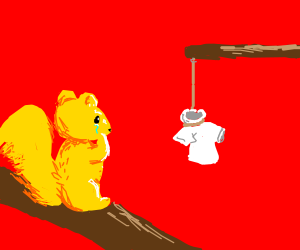squirrel is sad because of hanging clothes