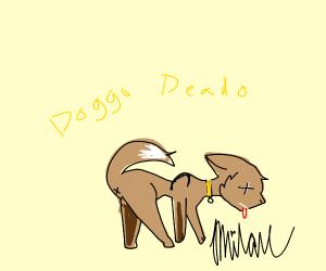 dog was killed :(