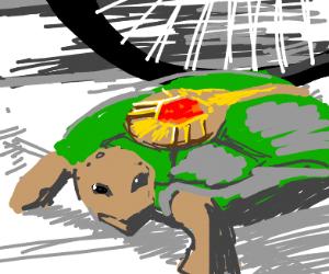 Polnaruff turtle