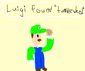 Luigi found a tumbleweed