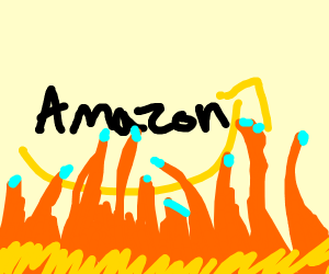 The Amazon is on fire