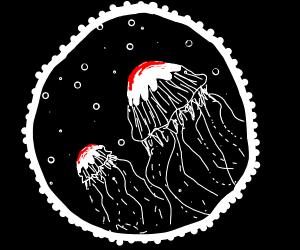 Starsign (jellyfish? )