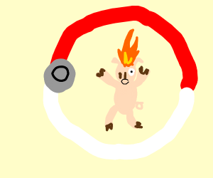 Pig with head on fire in Pokémon ball