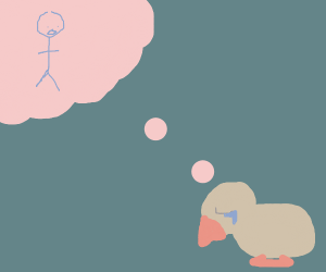 duck wishing for a child