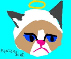 Rest in peace grumpy cat...