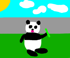 A Panda?