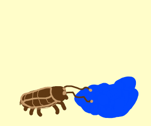 Roach drinking water