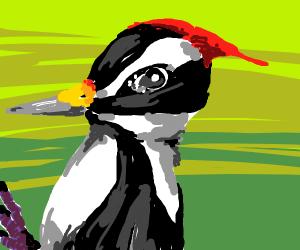Woodpecker pecks the previous panel