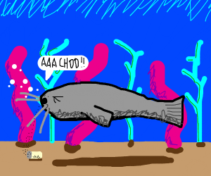 Catfish Sneezing