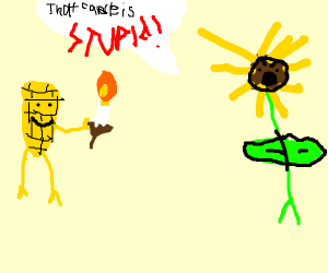corn likes candle, sunflower doesn't like it.