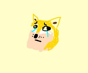 Sad doge