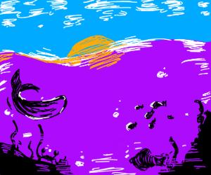Under the purple sea!