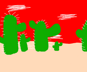 Giant cactus world at sundown