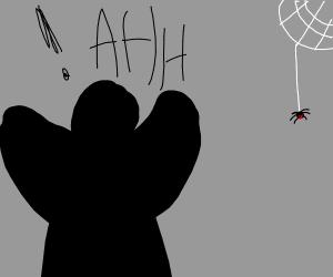 A shadow man has arachnophobia.