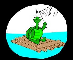 stranded turtle on wooden raft