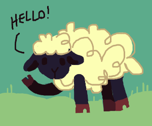 A sheep named Jeb