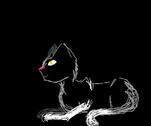 A Furry Cat