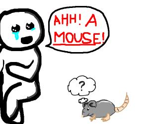 Eek! A mouse!