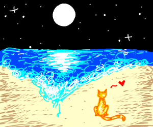 cat on a beach happy about moon and stars