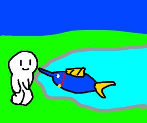 Pet Sailfish