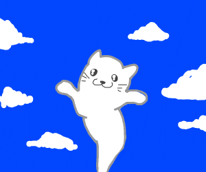 cat spirit goes to heaven