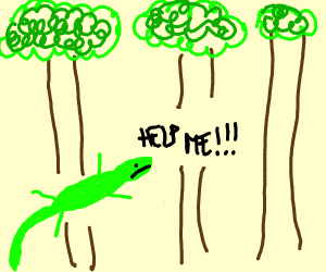 Lizard lost in a forest