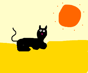 A puma in a large feild with an orange sun