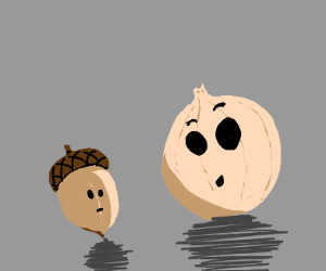 Onion doesn't know what and acorn is