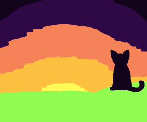 Cat silhouette watches sunset