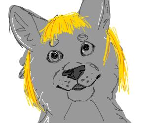 Alisarticwolf??????????